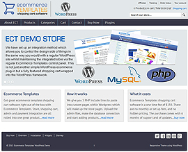 Wordpress demo store