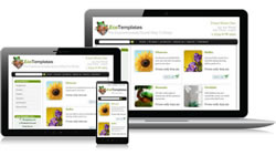 Responsive Design Eco Ecomm Plus