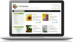 Responsive Design Eco Ecomm Plus #2