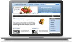 Responsive Design Gadgets Ecomm Plus #2