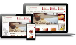 Responsive Design Lifestyle Ecomm Plus